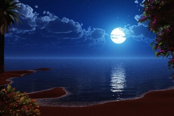 moonlitnights05