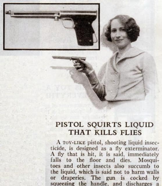 Pistola per uccidere le mosche